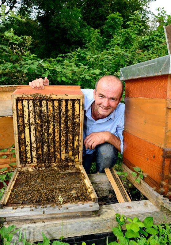 Imker Zoran Krizic mit Bienenstock